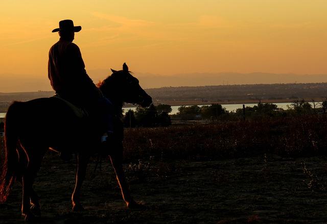 cowboy-283449_640